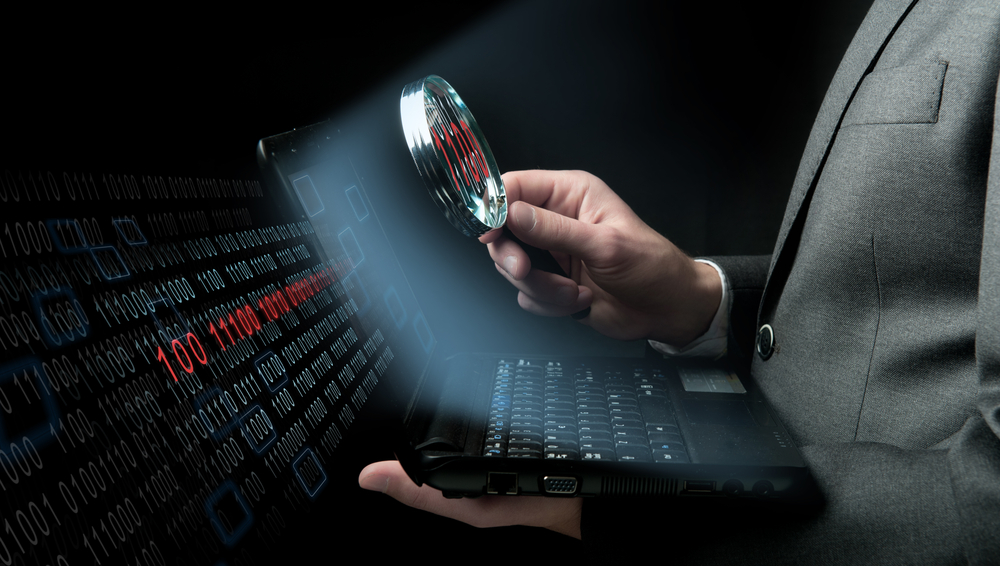 UAE cyber crime laws