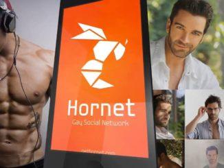 Hornet in UAE